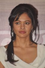 Pooja Kumar at Vishwaroop promotions with Videocon in J W Marriott, Mumbai on 4th Jan 2013 (60).JPG