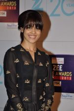 Genelia D Souza at Zee Awards red carpet in Mumbai on 6th Jan 2013 (108).JPG