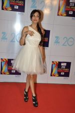 Malaika Arora Khan at Zee Awards red carpet in Mumbai on 6th Jan 2013 (198).JPG