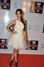 Malaika Arora Khan at Zee Awards red carpet in Mumbai on 6th Jan 2013 (199).JPG
