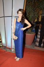Sagarika Ghatge at Zee Awards red carpet in Mumbai on 6th Jan 2013,1 (44).JPG