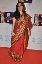 Shaina NC at Zee Awards red carpet in Mumbai on 6th Jan 2013 (10).JPG