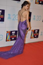 Shazahn Padamsee at Zee Awards red carpet in Mumbai on 6th Jan 2013 (187).JPG