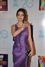 Shazahn Padamsee at Zee Awards red carpet in Mumbai on 6th Jan 2013 (189).JPG
