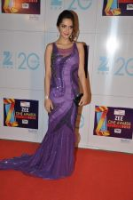 Shazahn Padamsee at Zee Awards red carpet in Mumbai on 6th Jan 2013 (190).JPG