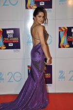 Shazahn Padamsee at Zee Awards red carpet in Mumbai on 6th Jan 2013 (191).JPG