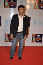 at Zee Awards red carpet in Mumbai on 6th Jan 2013 (39).JPG