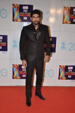 at Zee Awards red carpet in Mumbai on 6th Jan 2013 (45).JPG