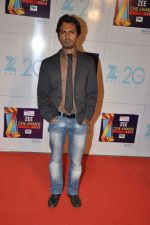 at Zee Awards red carpet in Mumbai on 6th Jan 2013 (65).JPG