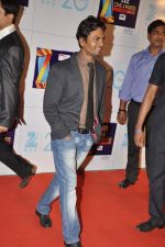 at Zee Awards red carpet in Mumbai on 6th Jan 2013 (67).JPG