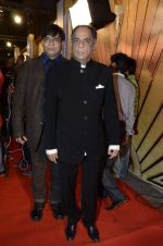 at Zee Awards red carpet in Mumbai on 6th Jan 2013,1 (12).JPG