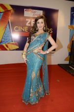 at Zee Awards red carpet in Mumbai on 6th Jan 2013,1 (18).JPG
