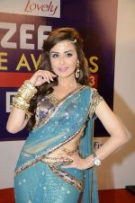 at Zee Awards red carpet in Mumbai on 6th Jan 2013,1 (20).JPG