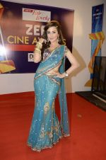 at Zee Awards red carpet in Mumbai on 6th Jan 2013,1 (22).JPG