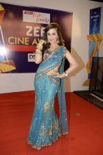 at Zee Awards red carpet in Mumbai on 6th Jan 2013,1 (23).JPG