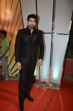 at Zee Awards red carpet in Mumbai on 6th Jan 2013,1 (36).JPG