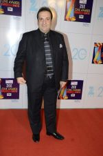 at Zee Awards red carpet in Mumbai on 6th Jan 2013,1 (76).JPG