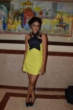 at Telly Calendar launch in Lalit Hotel, Mumbai on 10th Jan 2013 (100).JPG
