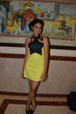 at Telly Calendar launch in Lalit Hotel, Mumbai on 10th Jan 2013 (102).JPG