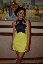 at Telly Calendar launch in Lalit Hotel, Mumbai on 10th Jan 2013 (103).JPG