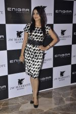 Kulraj Randhawa at Relaunch of Enigma hosted by Krishika Lulla in J W Marriott, Mumbai on 11th Jan 2013 (236).JPG