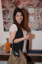 at Hacienda art gallery to launch silver exhibition in Kalaghoda, Mumbai on 16th Jan 2013 (70).JPG