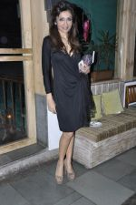 Queenie Singh at Vinod Nair hosts bash for Greogry David Roberts in Le Sutra, Mumbai on 21st Jan 2013 (52).JPG