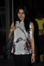 Bhagyashree at Reception hosted by Kunika and Rana Singh in honour of Lord Wedgwood in Mumbai on 23rd Jan 2013 (32).JPG