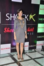 Rukhsar at Shock club launch in Mumbai on 24th Jan 2013 (38).JPG