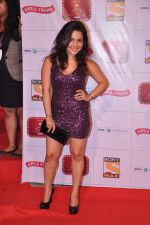 Chitrashi Rawat at Stardust Awards 2013 red carpet in Mumbai on 26th jan 2013 (466).JPG