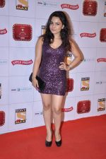 Chitrashi Rawat at Stardust Awards 2013 red carpet in Mumbai on 26th jan 2013 (347).JPG