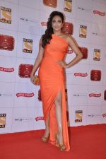 Jiah Khan at Stardust Awards 2013 red carpet in Mumbai on 26th jan 2013 (405).JPG