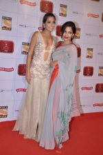 Monica Dogra at Stardust Awards 2013 red carpet in Mumbai on 26th jan 2013 (552).JPG