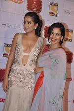 Monica Dogra at Stardust Awards 2013 red carpet in Mumbai on 26th jan 2013 (553).JPG