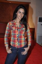 Mallika Sherawat at Dirty Politics film announcement in Mumbai on 28th Jan 2013 (24).JPG