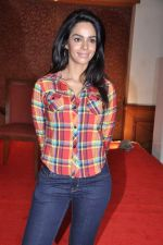 Mallika Sherawat at Dirty Politics film announcement in Mumbai on 28th Jan 2013 (27).JPG