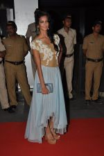 Poorna Jagannathan at the Premiere of Midnight_s Children in PVR, Pheonix, Mumbai on 31st Jan 2013 (39).JPG