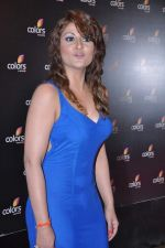 Urvashi Dholakia at Colors bash in Grand Hyatt, Mumbai on 2nd Feb 2013 (155).JPG