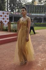 at McDowell Signature Premier Indian Derby 2013 day 1 in Mumbai on 3rd Feb 2013 (73).JPG