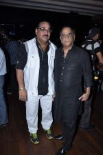 at Bhojpuri film Sansar launch in Escobar, Mumbai on 4th Feb 2013 (39).JPG