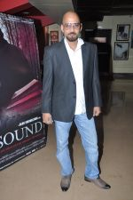 Alok Shrivastava at The Unsound film screening in PVR, Mumbai on 6th Feb 2013 (25).JPG