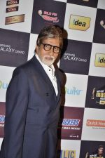 Amitabh Bachchan at Radio Mirchi music awards red carpet in Mumbai on 7th Feb 2013 (114).JPG