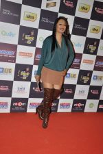 Kashmira Shah at Radio Mirchi music awards red carpet in Mumbai on 7th Feb 2013 (74).JPG