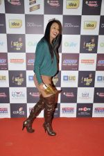 Kashmira Shah at Radio Mirchi music awards red carpet in Mumbai on 7th Feb 2013 (75).JPG