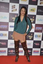 Kashmira Shah at Radio Mirchi music awards red carpet in Mumbai on 7th Feb 2013 (76).JPG
