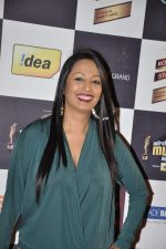 Kashmira Shah at Radio Mirchi music awards red carpet in Mumbai on 7th Feb 2013 (77).JPG