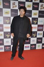 Parsoon Joshi at Radio Mirchi music awards red carpet in Mumbai on 7th Feb 2013 (181).JPG