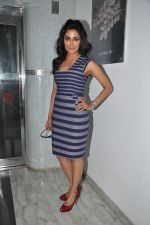 Chitrangada Singh at I Me Aur Main press conference in Escobar, Mumbai on 11th Feb 2013 (44).JPG
