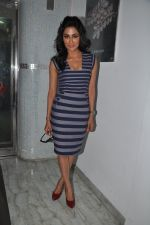 Chitrangada Singh at I Me Aur Main press conference in Escobar, Mumbai on 11th Feb 2013 (45).JPG