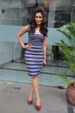 Chitrangada Singh at I Me Aur Main press conference in Escobar, Mumbai on 11th Feb 2013 (50).JPG